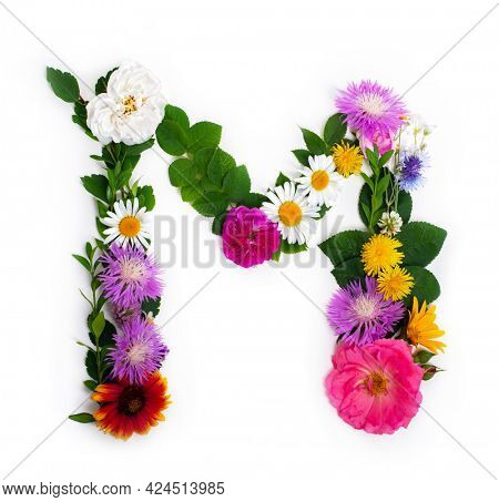Letter M, concept alphabet design. Floral summer font. Seasonal decorative beautiful type mades of different multi-colored blooming flowers and grass. Natural summertime print