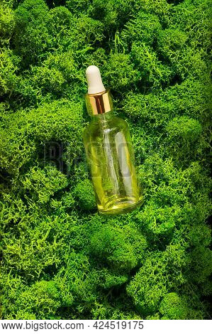 Dropper Glass Bottle Mock-up On Green Moss Background. Body Treatment And Spa. Natural Beauty Produc