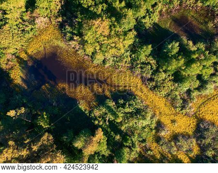 Aerial drone shot of summer june landscape with river