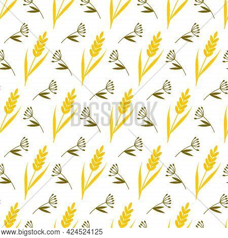 Pattern With Meadow Grass And Yellow Ears. Vector Illustration Isolated On White Background. For The