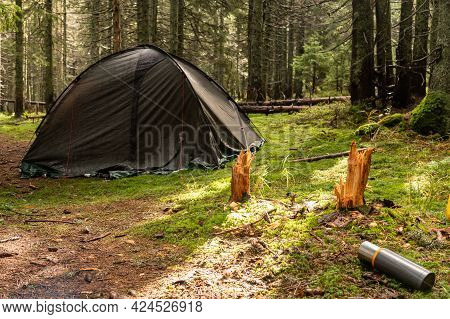 Tourist Tent In The Forest. Thermos For Hot Drinks. Overnight In The Forest. Camping In The Woods. M