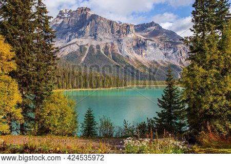 Coniferous forest and mountain peaks surround the lake with azure water. Picturesque huge lake in the Canadian Rockies.  Early morning on magnificent Emerald Lake.