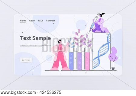 Scientists Working With Dna Of Plants In Test Tubes Researchers Making Experiment In Lab Genetically