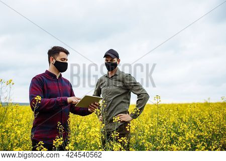 Two Young Farmers In Masks Stand In A Rapeseed Field And Enter Data Into A Tablet. Two Agronomists I
