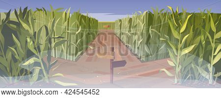 Road On Cornfield With Fork And Wooden Direction Sign In Fog. Concept Of Choosing Way. Vector Cartoo