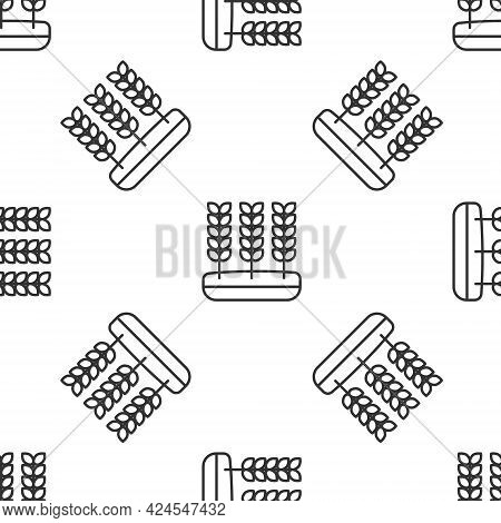 Grey Line Cereals Set With Rice, Wheat, Corn, Oats, Rye, Barley Icon Isolated Seamless Pattern On Wh