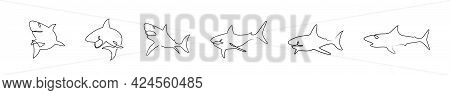 Countinuous One Line Drawing Sharks Silhouete Icons Set. Shark Logo Set Line Art. One Line Art Templ