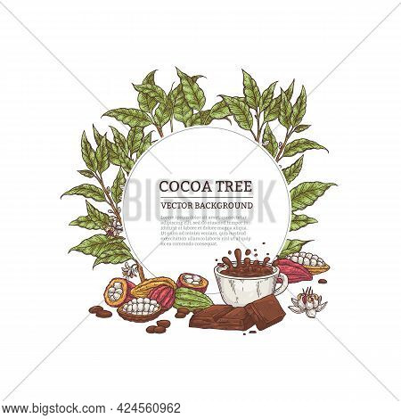 Cacao Tree Frame With Leaves And Fruits Engraving Vector Illustration Isolated.
