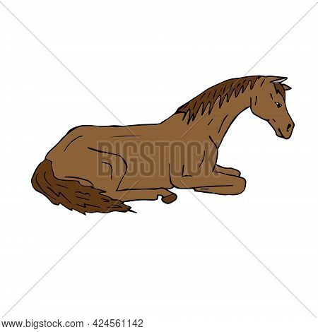 Vector Hand Drawn Doodle Sketch Colored Laying Horse Isolated On White Background