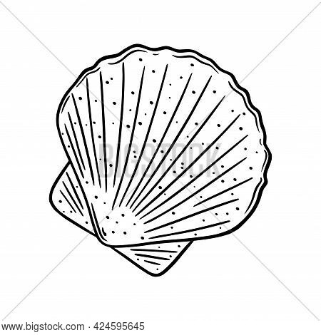 Scallop Shell Logo. Mediterranean Seashell Sketch. Vector Illustration Isolated In White Background
