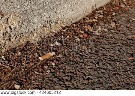 Cigarette Butt Tossed On Side Of Road
