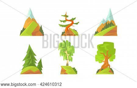 Forest Trees Set, Evergreen Pine, Fir And Deciduous Trees Cartoon Vector Illustration