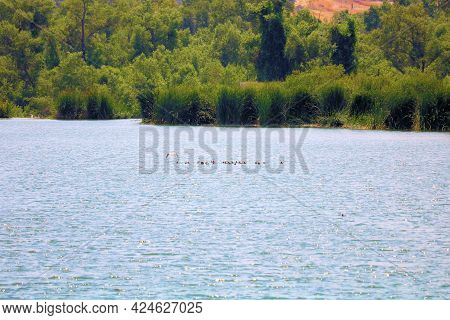 Lake Surrounded By A Lush Riparian Woodland Where People Can Go Boating, Fishing, And Birdwatching T