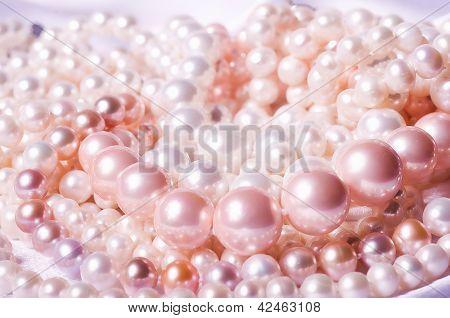Beautiful bijouterie in luxury design on white background