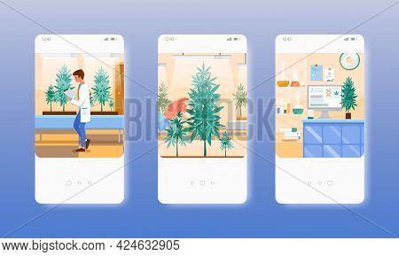 Hemp Cultivation. Growing Marijuana Indoors. Mobile App Screens, Vector Website Banner Template. Ui,