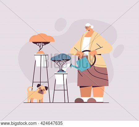 Elderly Woman Watering Flowers From Watering Can Senior Housewife Taking Care Of House Plants Horizo