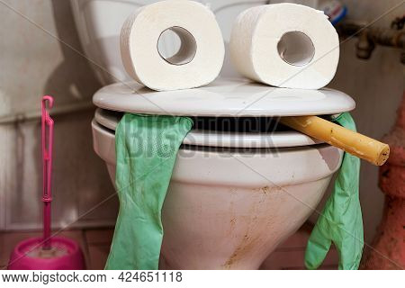 Funny Face Created From Toilet Seat And Toilet Tissue Rolls In The Toilet