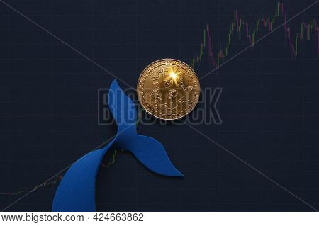 Bitcoin Whale Holder. Manipulated Currency Valuations. Trading Concept