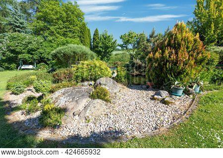 Summer Garden With Conifer Trees, Green Grass And Garden Pond. Gardening Concept.