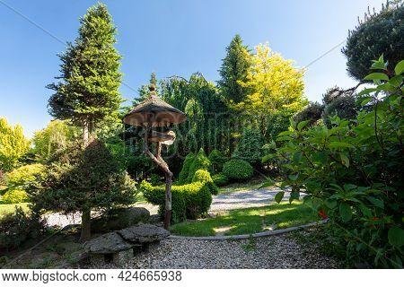 Summer Garden With Conifer Trees, Green Grass And Garden Signpost. Gardening Concept.