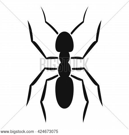 Pest Ant Icon. Simple Illustration Of Pest Ant Vector Icon For Web Design Isolated On White Backgrou