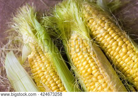 Ear Of Corn With Leaves Close-up, Tasty And Healthy Seasonal Vegetable