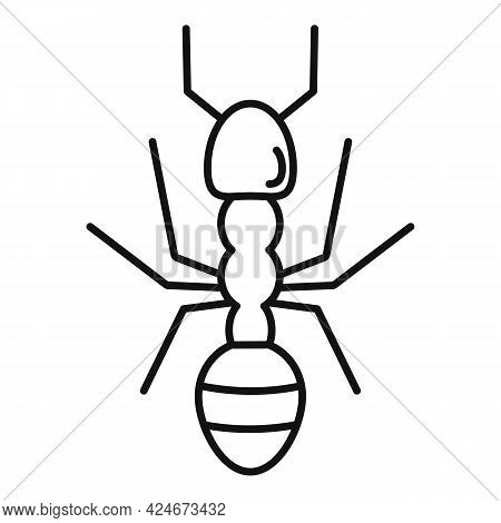Farmer Ant Icon. Outline Farmer Ant Vector Icon For Web Design Isolated On White Background