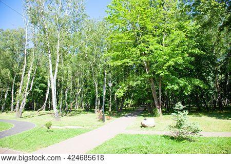 Square In Summer. Svetlogorsk (kaliningrad Oblast), Russia.