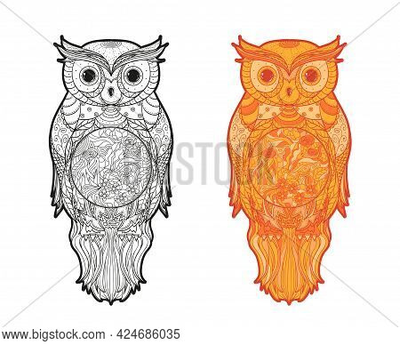 Owl On White. Detailed Hand Drawn Line Bird With Abstract Patterns. Freehand Drawing. Different Colo