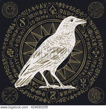 Hand-drawn Illustration With A White Wise Raven Or Crow In Retro Style. Vector Banner With Mysteriou