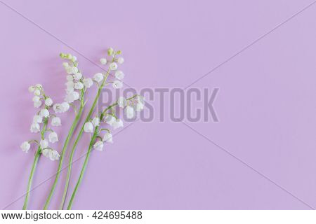 Beautiful Lilies Of The Valley  Flowers On A Pastel Violet Background. Flat Lay. Place For Text.