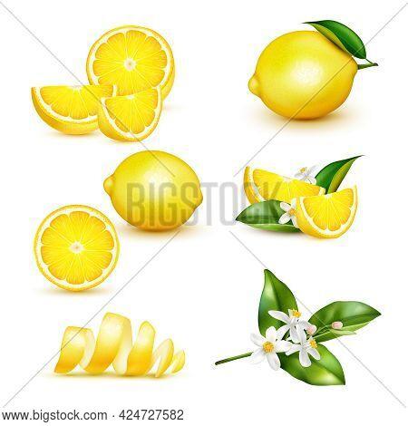 Citrus Lemon Fruit Whole Half Quarter Slice Spiral Peel Leaves Twig Flowers Realistic Set Isolated V