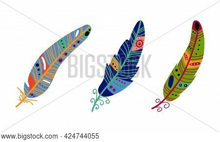Colorful Feather And Plumage As Boho Tribal Element Vector Set