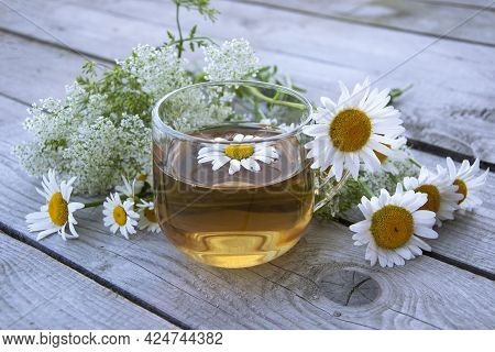 Chamomile Tea In A Glass Cup. Floral Background. A Transparent Cup With A Chamomile Drink Stands On