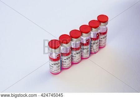 Animal Rabies Vaccine Biocan R From Bioveta Is On White. Six New Ampoules With Pink Medicine Inside.