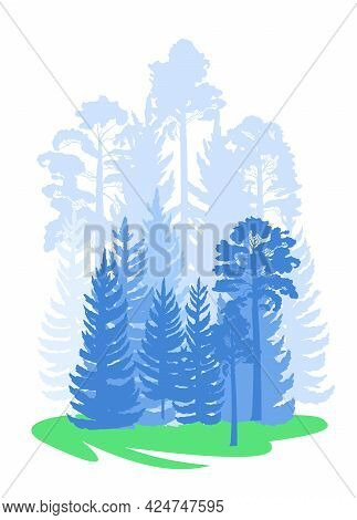 Forest Silhouette Scene. Landscape With Coniferous Trees. Beautiful Blue View. Pine And Spruce Trees
