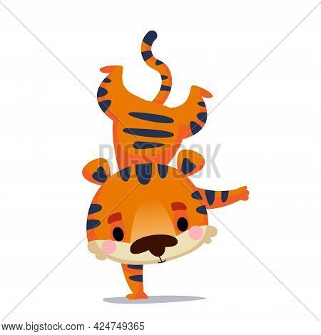 The Athlete Tiger Cub Stands On One Hand Upside Down. Vector Illustration In Cartoon Children S Styl