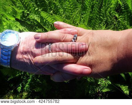 Hands Of Older Man And Woman, Fingers Intertwined, With Latvian Traditional King Namejs Silver Weddi