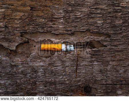 Cigarette Butt On A Rotten Wooden Surface.