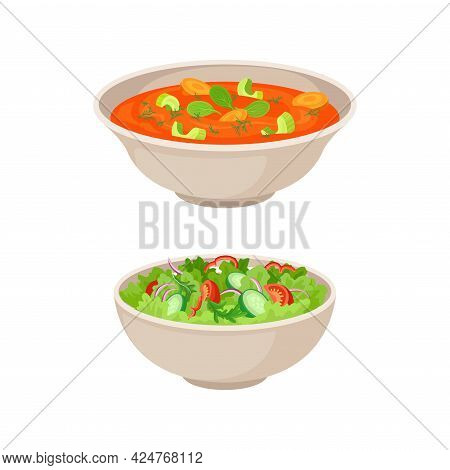 Vegan Dish And Main Course With Vegetable Salad And Thick Soup Vector Set