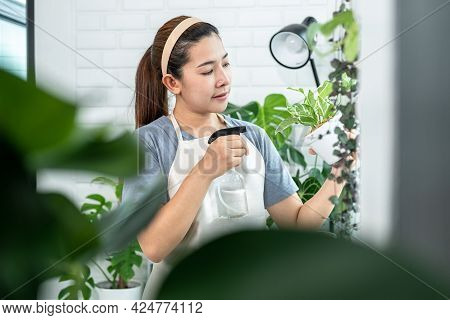Asian Woman Gardener Is Holding A Small Houseplant To Using Spray Bottle Watering Plants And Take Ca