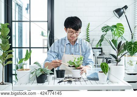 Asian Man Gardener Using Shovel To Transplanting Plant Into A New Pot And Take Care Of Plants In The