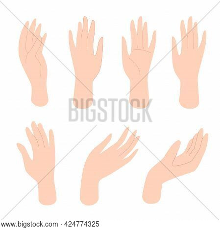 Set Of Female Hands With Different Gestures. Human Body Parts, Body Care, Female Beauty. Vector Illu