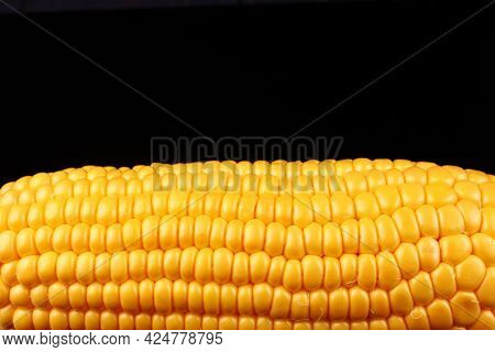 Corn Maize Cobs Place For Text Cope Space