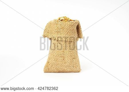 Bird Food Seeds In A Bag Isolated On White Background. Food Mixture Of Grains And Seeds