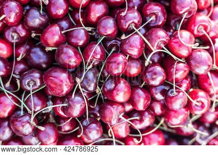 Close Up Of Pile Of Ripe Cherries With Stalks And Leaves. Large Collection Of Fresh Red Cherries. Ri