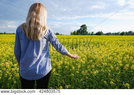 Back View Of The Girl Against The Background Of A Blooming Rapeseed Field. Happy Young Woman In A Fi