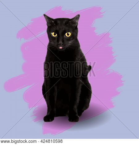 Black Cat Yellow Eyes Vector .on A Blue Background And The Color From The Paintbrush Pink