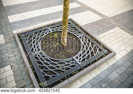 Steel Gray Trellis Around The Tree Trunk On The Sidewalk