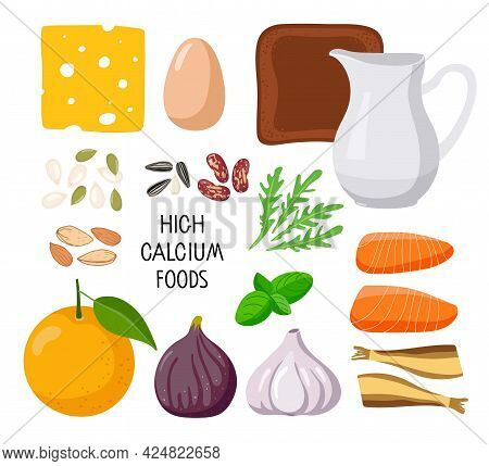 Infographics High Calcium Foods. Healthy Lifestyle. Influence On The Bone And Neuromuscular System.